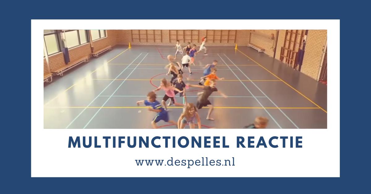 Multifunctioneel Reactiespel in de gymles