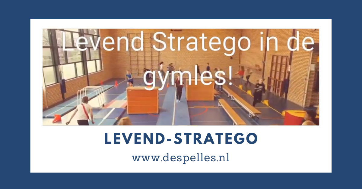 Levend Stratego in de gymles