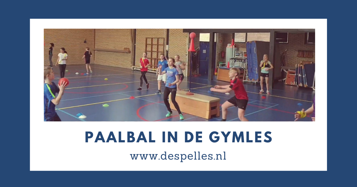 Paalbal in de gymles