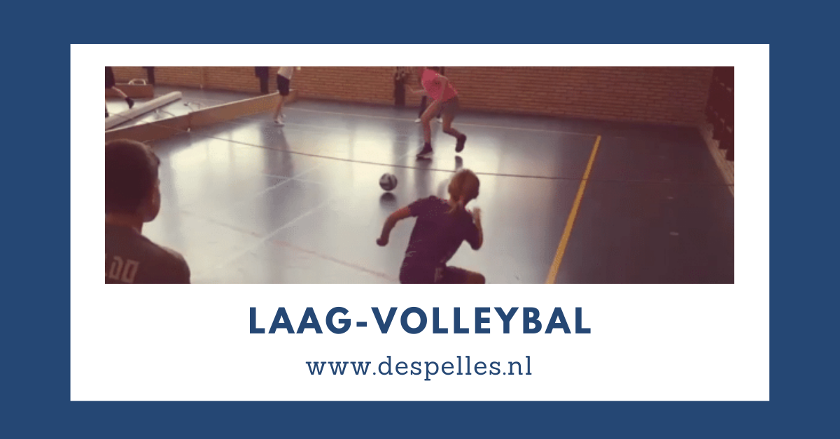 Laag-Volleybal in de gymles