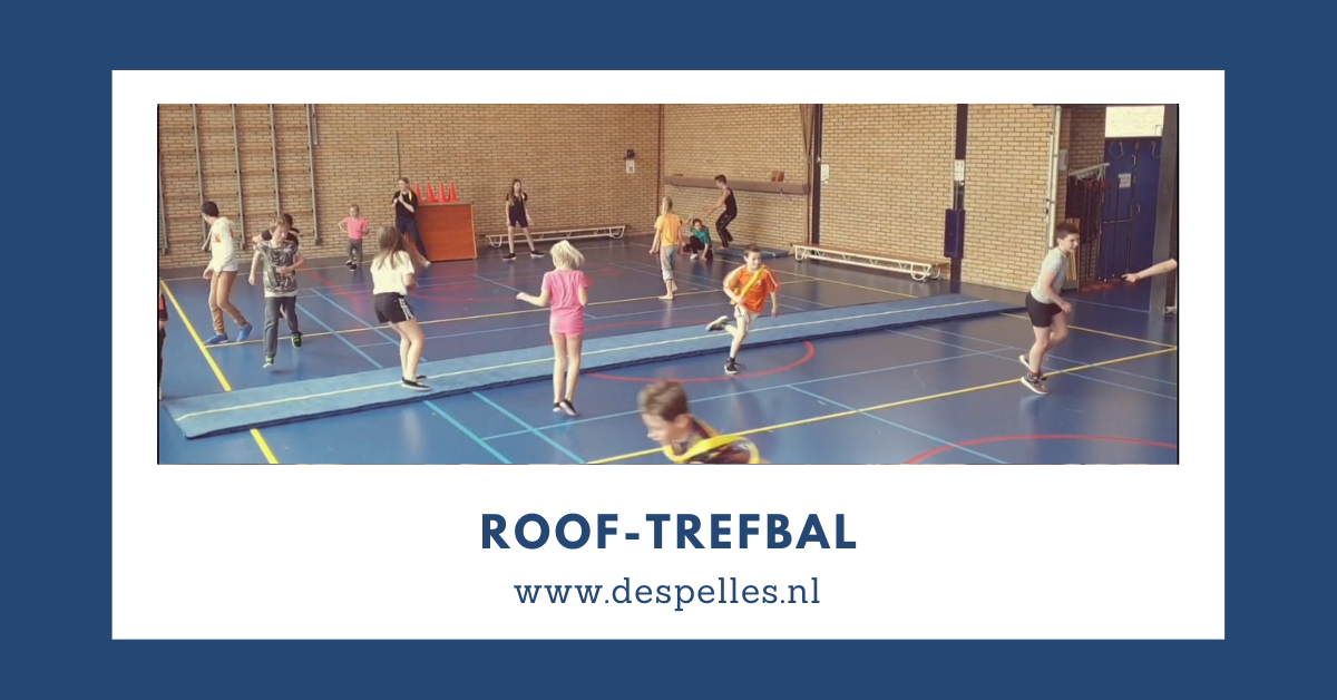 Roof-Trefbal in de gymles