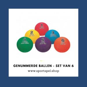 Genummerde ballen - set van 6