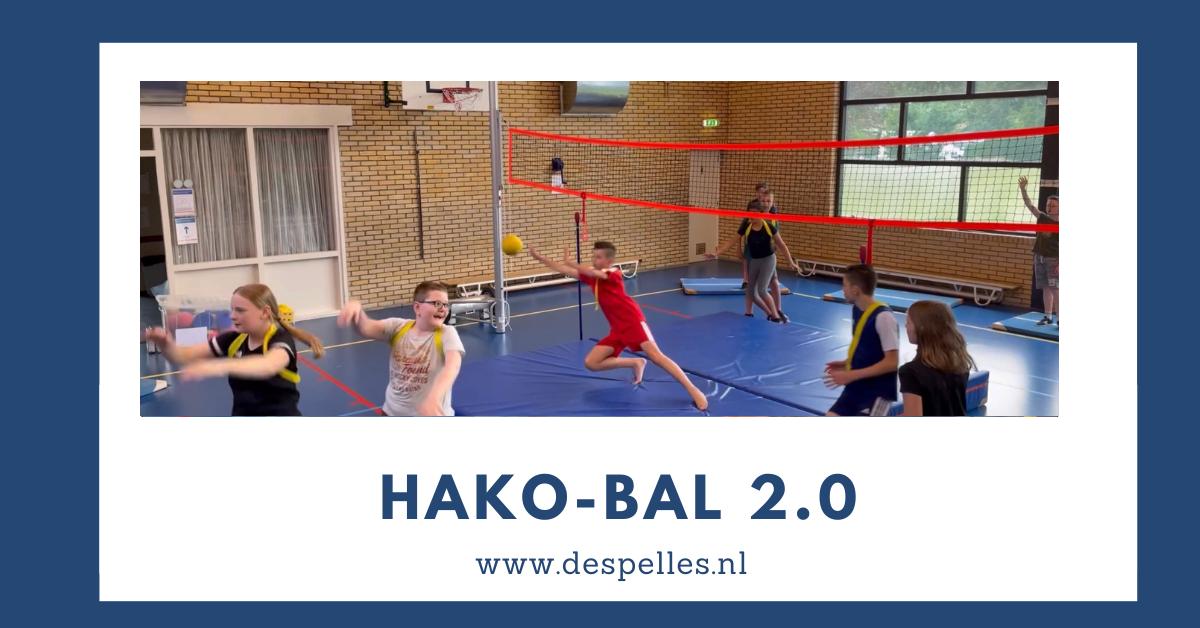 HaKo-bal 2.0 in de gymles